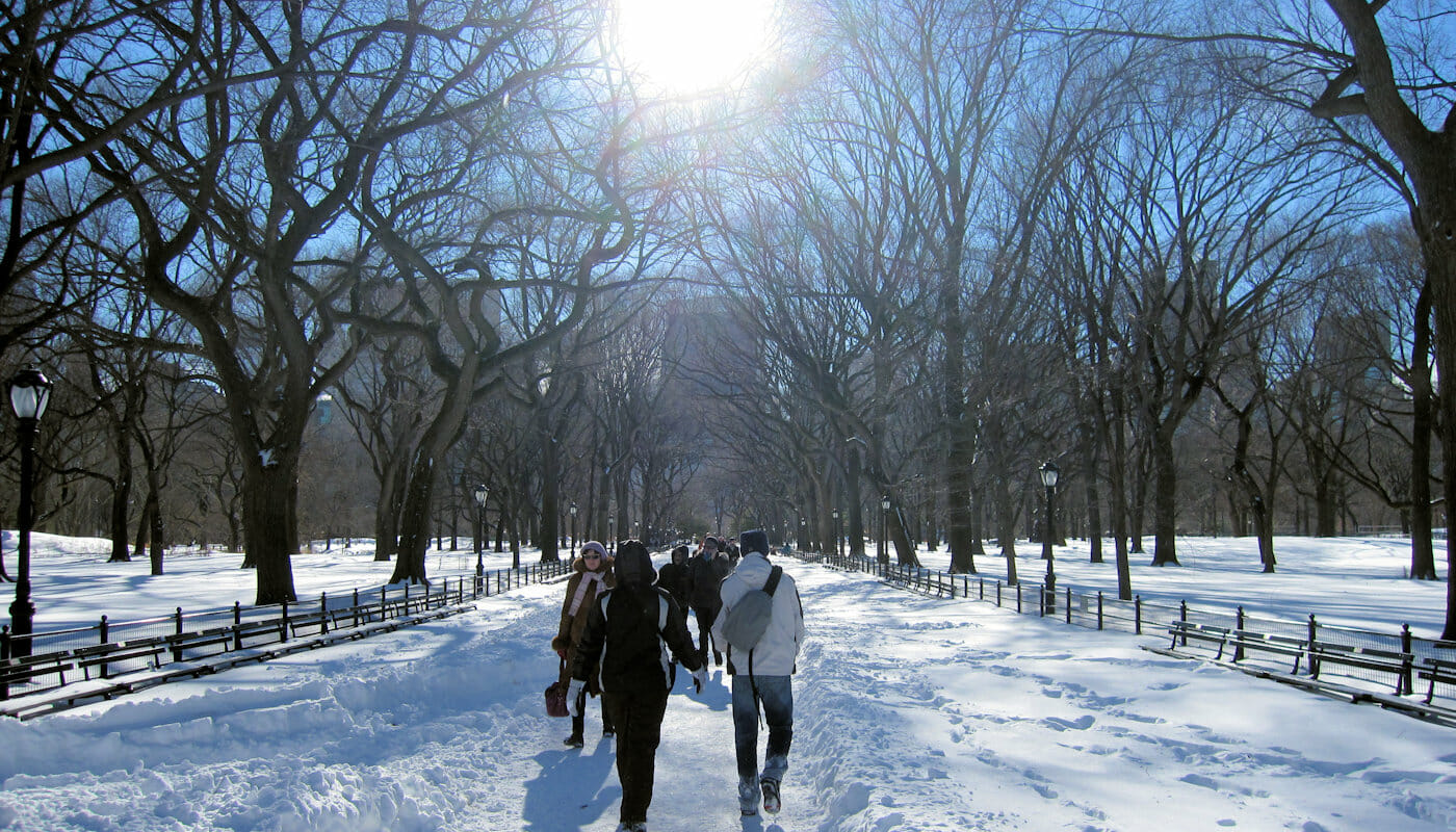 Weather in New York - Winter