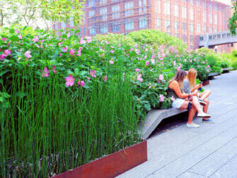 High Line Park in New York - Stroll