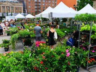 New York Markets   Plants on Union Square