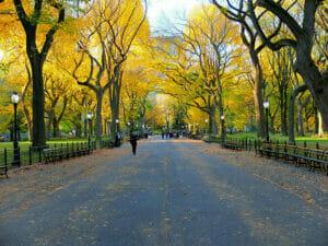 Central Park in New York - NewYork.co.uk
