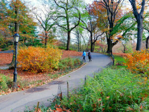 Parks in New York