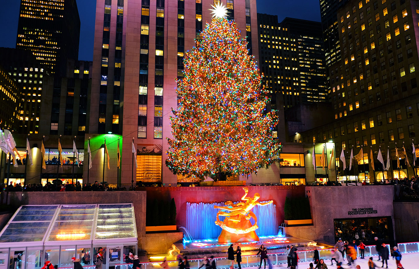 Christmas Trees In Queens, Ny 2021 Christmas Season In New York 2021 Newyork Co Uk