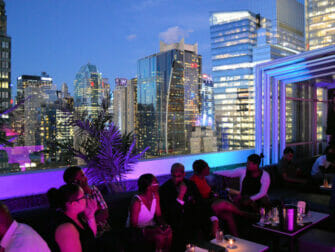 The Best Rooftop Bars of New York - Skyroom in New York - View