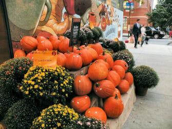 Halloween pumpkins in New York