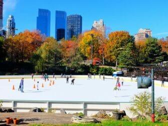 Central Park Movie Sites Walking Tour - Wollman Rink