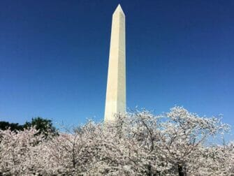 Washington DC Day Trip - Monument