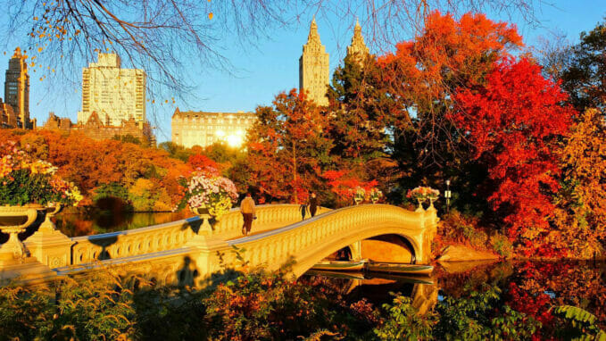 Autumn in Central Park – Zoom