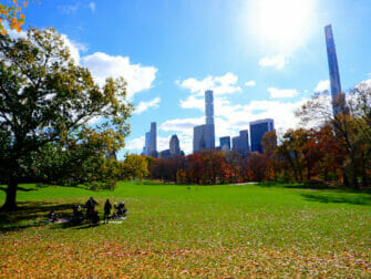Parks in New York - Central Park