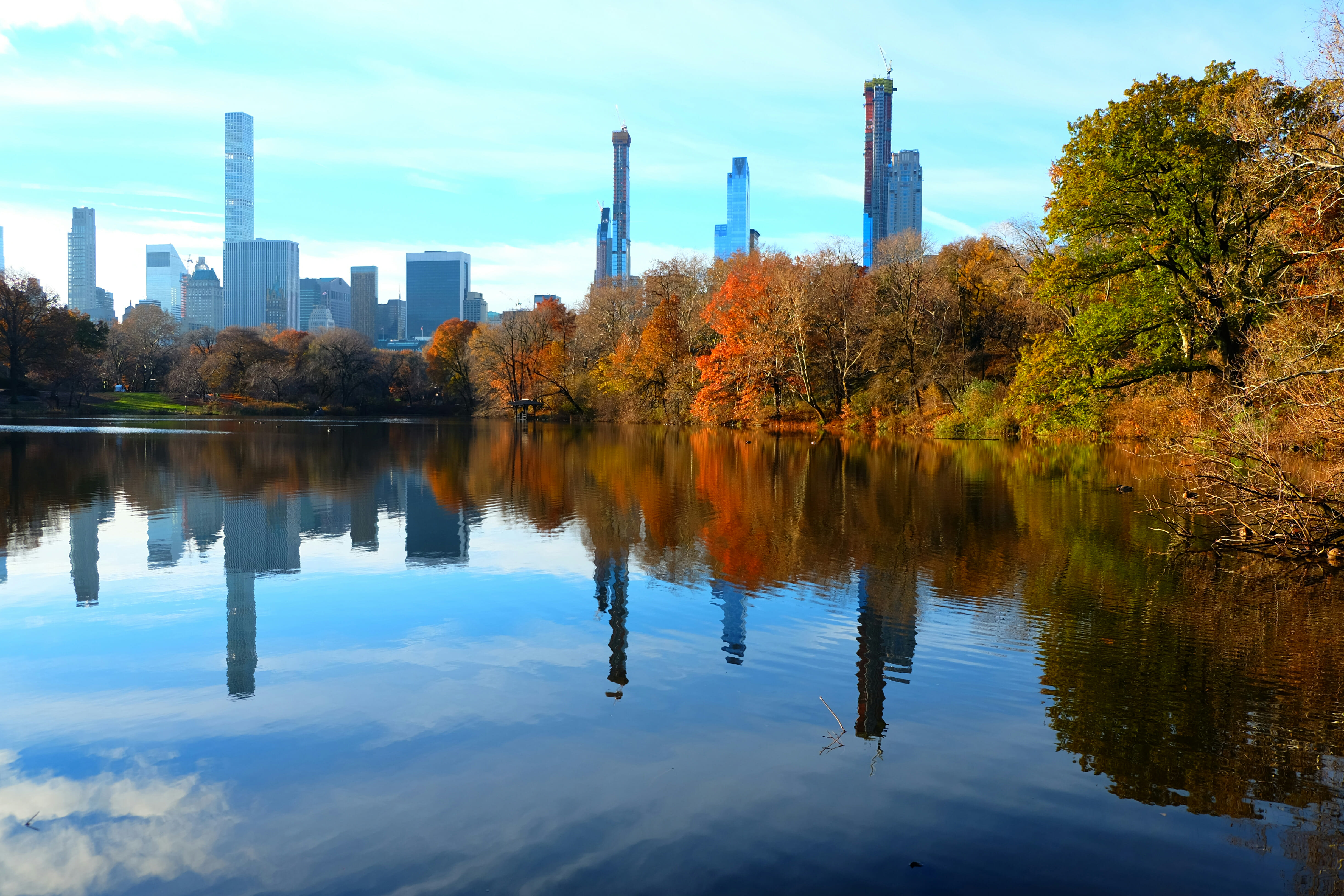 Central Park – High Quality Wallpaper